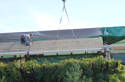 Tarping the roof